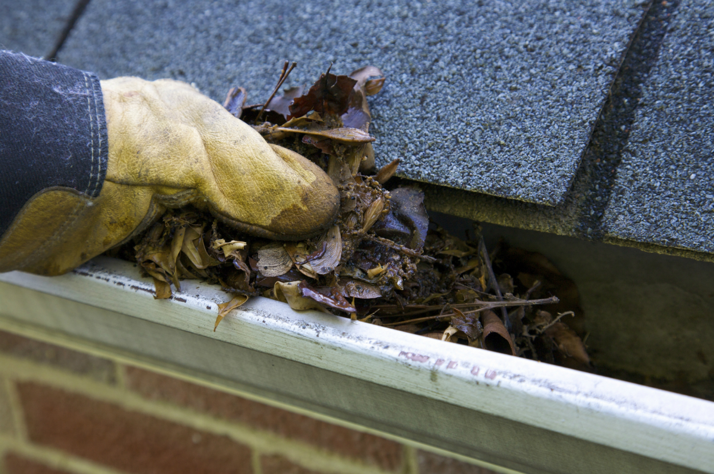 Image Result For What Is The Best Gutter Guard